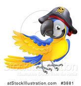 Vector Illustration of a Presenting Blue and Gold Pirate Macaw Parrot by AtStockIllustration