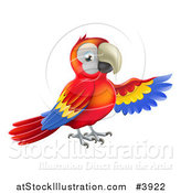Vector Illustration of a Presenting Scarlet Macaw Parrot 1 by AtStockIllustration
