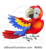 Vector Illustration of a Presenting Scarlet Macaw Parrot by AtStockIllustration