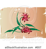 Vector Illustration of a Pretty Red Flowers on an Antique Parchment Background by AtStockIllustration