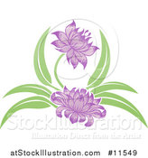 Vector Illustration of a Purple Blooming Flower by AtStockIllustration