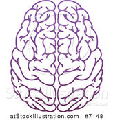 Vector Illustration of a Purple Human Brain by AtStockIllustration