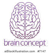 Vector Illustration of a Purple Human Brain over Sample Text by AtStockIllustration