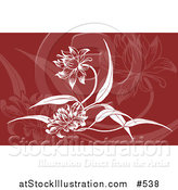 Vector Illustration of a Red and White Floral Background by AtStockIllustration
