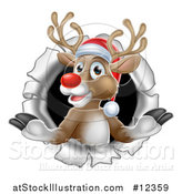 Vector Illustration of a Red Nosed Christmas Reindeer in a Hole in a Wall by AtStockIllustration