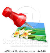 Vector Illustration of a Red Pin over a Plumera Photo by AtStockIllustration