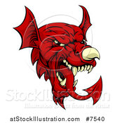 Vector Illustration of a Red Welsh Dragon Mascot by AtStockIllustration