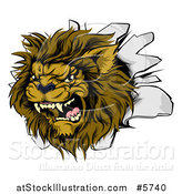 Vector Illustration of a Roaring Lion Mascot Head Breaking Through a Wall by AtStockIllustration