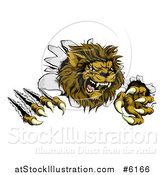 Vector Illustration of a Roaring Lion Mascot Shredding Through a Wall by AtStockIllustration