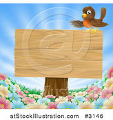 Vector Illustration of a Robin Presenting on a Blank Wood Sign on a Tree Stump over Spring Flowers by AtStockIllustration