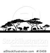 Vector Illustration of a Safari Scene of Black Silhouetted African Animals, Giraffes, Rhinos, Elephants and Lions, Under Acacia Trees by AtStockIllustration