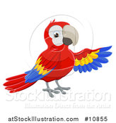 Vector Illustration of a Scarlet Macaw Parrot Presenting with a Wing by AtStockIllustration