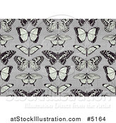 Vector Illustration of a Seamless Background Pattern of Butterflies on Stripes by AtStockIllustration