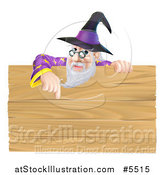 Vector Illustration of a Senior Male Wizard Pointing down at a Wooden Sign by AtStockIllustration