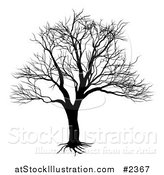 Vector Illustration of a Silhouetted Black and White Bare Tree by AtStockIllustration