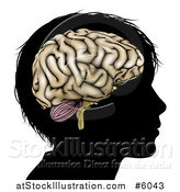 Vector Illustration of a Silhouetted Boys Head with a Brain by AtStockIllustration