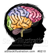 Vector Illustration of a Silhouetted Boy's Head with a Colorful Brain by AtStockIllustration