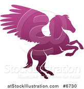 Vector Illustration of a Silhouetted Gradient Purple Rearing Pegasus Winged Horse by AtStockIllustration