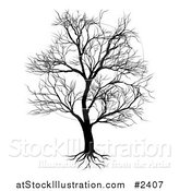Vector Illustration of a Silhouetted Mature Bare Tree and Roots by AtStockIllustration