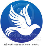 Vector Illustration of a Silhouetted White Dove in Flight Inside a Blue Circle by AtStockIllustration