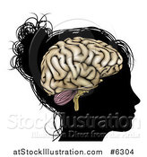 Vector Illustration of a Silhouetted Woman's or Girl's Head with a Visible Brain by AtStockIllustration