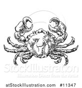 Vector Illustration of a Sketched Black and White Seafood Crab by AtStockIllustration