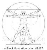Vector Illustration of a Sketched Vitruvian Man by AtStockIllustration