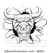 Vector Illustration of a Snarling Aggressive Black and White Bull Breaking Through a Wall by AtStockIllustration