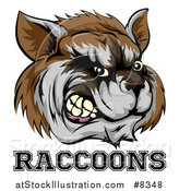 Vector Illustration of a Snarling Aggressive Raccoon Mascot Head and Text by AtStockIllustration