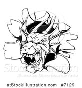 Vector Illustration of a Snarling Black and White Dragon Mascot Head Breaking Through a Wall by AtStockIllustration