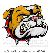 Vector Illustration of a Snarling Bulldog Mascot Face with a Spiked Collar by AtStockIllustration
