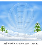 Vector Illustration of a Snowy Christmas Winter Background with Evergreens and Sunshine by AtStockIllustration