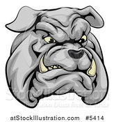 Vector Illustration of a Sports Bulldog Mascot Face by AtStockIllustration
