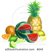 Vector Illustration of a Still Life of Tropical Fruits, Pineapple, Watermelon, Lemon, Lime, Orange by AtStockIllustration