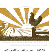 Vector Illustration of a Sunrise over a Brown Silhouetted Farm House, a Crowing Rooster and Fields by AtStockIllustration