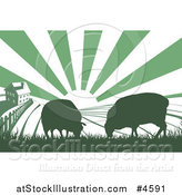 Vector Illustration of a Sunrise over a Green Silhouetted Farm House with Cows and Fields by AtStockIllustration