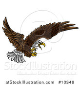 Vector Illustration of a Swooping Bald Eagle with Talons Extended by AtStockIllustration