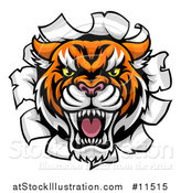 Vector Illustration of a Tiger Mascot Head Breaking Through a Wall by AtStockIllustration