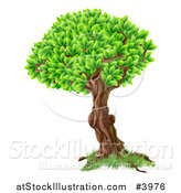 Vector Illustration of a Tree with a Textured Trunk and Lush Foliage by AtStockIllustration