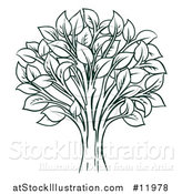 Vector Illustration of a Tree with Leaves by AtStockIllustration