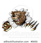 Vector Illustration of a Vicious Aggressive Bear Mascot Slashing Through a Wall by AtStockIllustration