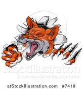 Vector Illustration of a Vicious Fox Slashing Through a Wall by AtStockIllustration