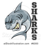 Vector Illustration of a Vicious Shark Mascot Attacking with Text by AtStockIllustration