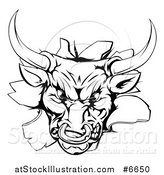 Vector Illustration of a Vicious Snarling Aggressive Black and White Bull Breaking Through a Wall by AtStockIllustration