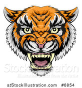 Vector Illustration of a Vicious Snarling Tiger Mascot Face by AtStockIllustration