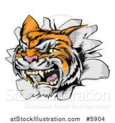 Vector Illustration of a Vicious Tiger Mascot Breaking Through a Wall by AtStockIllustration