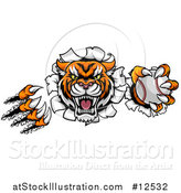 Vector Illustration of a Vicious Tiger Mascot Slashing Through a Wall with a Baseball by AtStockIllustration