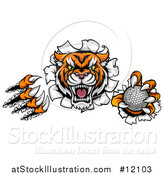 Vector Illustration of a Vicious Tiger Mascot Slashing Through a Wall with a Golf Ball by AtStockIllustration