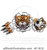 Vector Illustration of a Vicious Tiger Mascot Slashing Through a Wall with a Soccer Ball by AtStockIllustration