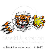 Vector Illustration of a Vicious Tiger Mascot Slashing Through a Wall with a Tennis Ball by AtStockIllustration
